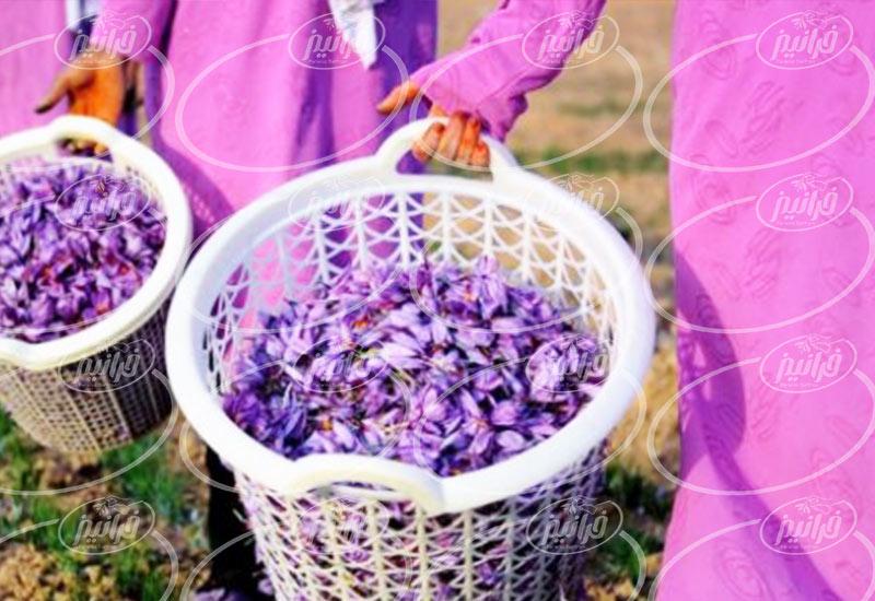 صادرات زعفران به عراق با بهترین کیفیت و قیمت