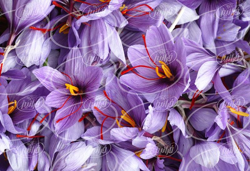 بهترین روش صادرات زعفران به ترکیه