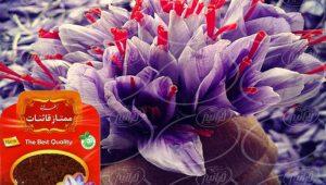 خرید بهترین زعفران دنیا با برند ساریج