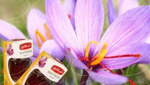 شرکت بزرگ پخش زعفران مصطفوی ۶۵۰ گرمی